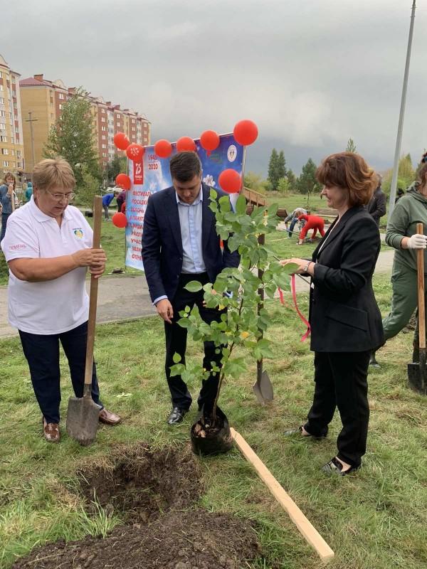 Акция носит международный характер, и по замыслу ее организаторов в 2020 году - в Год памяти и славы - в разных уголках Земли должно появиться 27 млн деревьев в память о каждом из 27 млн погибших в годы Великой Отечественной войны