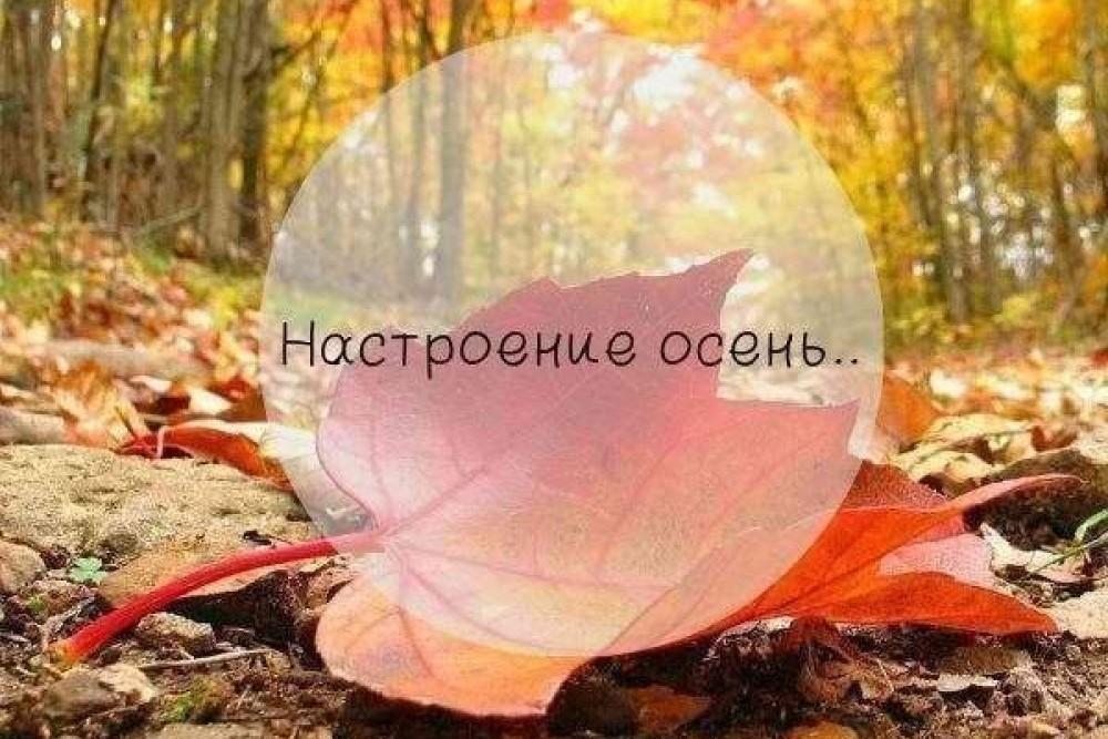 День, настроение осень картинки прикольные